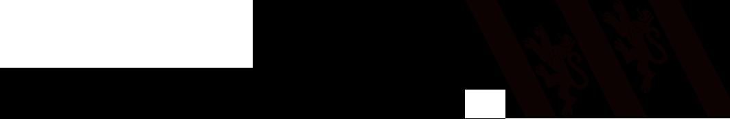 logo_stadtwinti